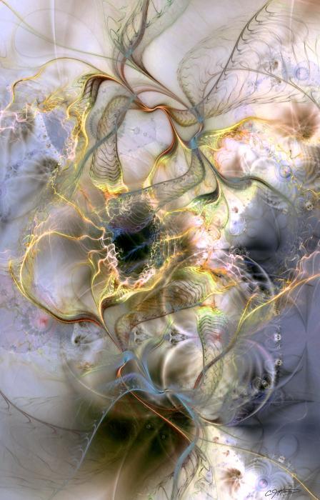 interconnectedness of life casey kotas