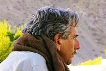 Darr Afghan