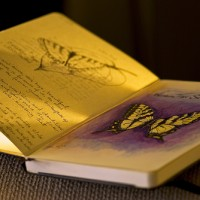 Butterfly-Gratitude-Journal-by-madlyinlove-withlife